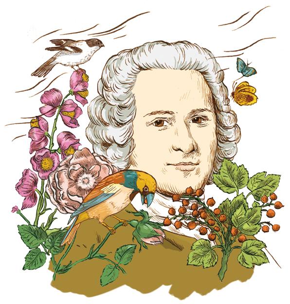 Jean-Jacques Rousseau TS n°278
