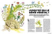 25_tsa339inteligence-des-plantes-1.jpg
